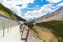 哥伦比亚icefield skywalk athabasca冰川加拿大 免版税库存图片