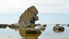 哥得兰岛环境美化与岩石在海 股票录像