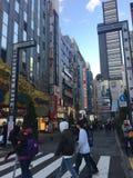 哥斯拉街在新宿,日本 免版税库存图片