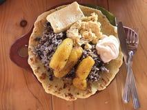哥斯达黎加典型的食物 免版税图库摄影