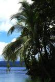 哥斯达黎加和巴拿马自然和风景 美国旅行 旅行癖 库存图片