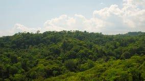 哥斯达黎加天线 影视素材