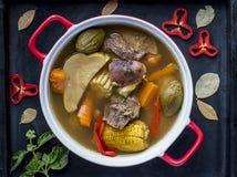 哥斯达黎加炖牛肉,典型的食物 库存图片