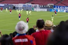 哥斯达黎加的足球迷 库存图片