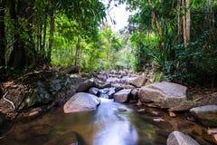 哥斯达黎加自然背景旅行目的地里约CelesteCosta Rica自然背景旅行目的地里约塞莱斯特 免版税库存照片
