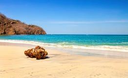 哥斯达黎加 免版税库存照片