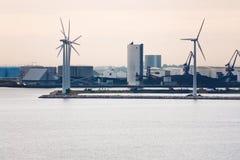 哥本哈根农场在陆风附近middelgrunden 库存照片