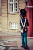 哥本哈根,丹麦- 9月8 :守卫2014年9月8日的皇家卫兵Amalienborg城堡在哥本哈根,丹麦 皇家顾 库存图片