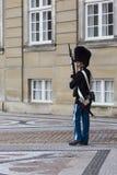 哥本哈根,丹麦- 9月8 :皇家卫兵在Amalienborg Cas 库存照片
