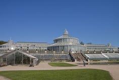 哥本哈根,丹麦-植物园的温室 免版税库存图片