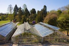 哥本哈根,丹麦-植物园的温室 免版税图库摄影