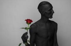 哥特式和万圣夜题材:有拿着一朵红色玫瑰,黑死病的黑皮肤的一个人隔绝在灰色背景在演播室 免版税库存图片