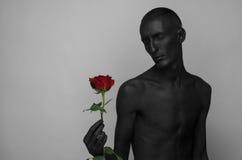 哥特式和万圣夜题材:有拿着一朵红色玫瑰,黑死病的黑皮肤的一个人隔绝在灰色背景在演播室 免版税库存照片