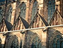 哥特式大教堂前面  库存图片