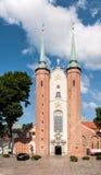 哥特式大教堂在格但斯克奥利瓦,波兰 免版税库存图片