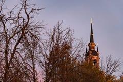 哥特式正统大教堂 免版税图库摄影