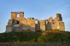 哥特式王侯的城堡在谢维日,波兰 免版税库存照片