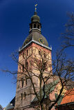 哥特式里加大教堂,拉脱维亚 免版税库存图片