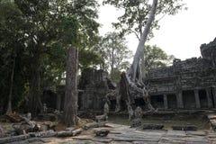 吴哥窟废墟和寺庙  柬埔寨收割siem 免版税库存照片