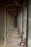 吴哥窟废墟在密林 免版税库存图片