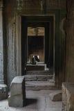 吴哥窟废墟在密林 免版税库存照片