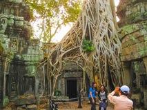 吴哥窟,柬埔寨- 2011年2月17日:Ta Prohm寺庙,吴哥,柬埔寨的古典图片 免版税库存照片