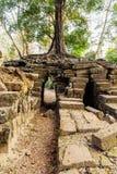 吴哥窟,高棉寺庙复合体,亚洲 柬埔寨收割siem 免版税库存照片