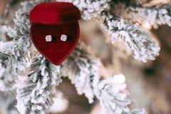 哦,这是圣诞节-她的节日礼物 免版税库存照片