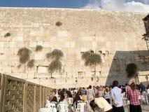 哭墙在耶路撒冷,以色列 库存图片