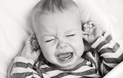 哭泣逗人喜爱的小男孩握他的耳朵 免版税图库摄影
