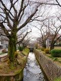 哲学家的步行在京都,日本 免版税库存图片