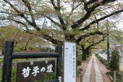 哲学家` s步行京都日本 免版税库存图片