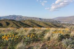 从贤哲小山的北部, Wenatchee 2 库存图片