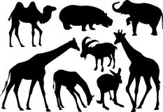 哺乳动物剪影向量 库存图片
