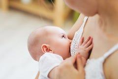 哺乳她的婴儿的年轻妈妈 哺乳期婴儿概念 照顾喂养她的小儿子或女儿用乳奶 免版税图库摄影