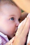哺乳户外。 免版税图库摄影