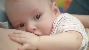 哺乳的婴孩画象 母性爱 可爱宝宝哺乳 股票视频