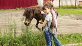 哺养两个女孩小马面包 股票录像