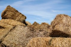 哺养的动物的干草堆在天空蔚蓝背景 免版税库存照片