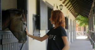 哺养的马用在槽枥的红萝卜 影视素材