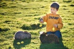 哺养两只兔子的小男孩在农场 免版税库存图片