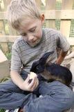 哺养他的宠物兔子的男孩 免版税库存照片