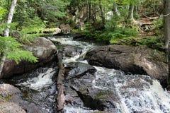 唐卡斯特河小瀑布 库存图片