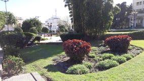 唐基尔市摩洛哥 图库摄影