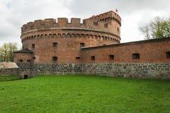 唐娜和琥珀色的博物馆塔在加里宁格勒 免版税库存图片