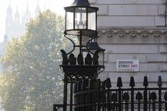 唐宁街的标志 免版税库存图片