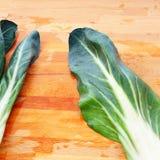 唐莴苣,称bietola在意大利,它仍然用于被烘烤的材料 免版税图库摄影