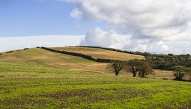 唐郡典型的波浪起伏的小山和山谷在北爱尔兰 免版税图库摄影