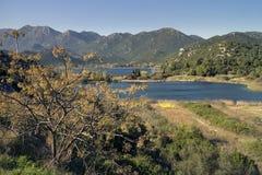 唤醒在Bacina湖岸的春天  图库摄影