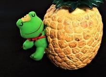 唤醒从冬眠的青蛙在春天 免版税库存照片